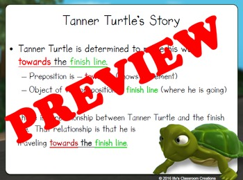 Turtle Determination Prepositions