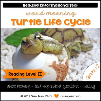 Turtle Life Cycle • Reading Comprehension Passages and Questions • RL II
