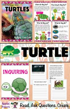 All About Turtles Nonfiction Unit