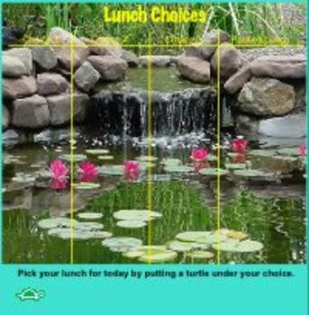 Turtle Pond Lunch Choice for SMART Board