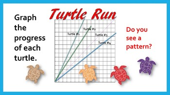 Turtle Run Performance Task for Sixth Grade