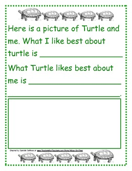 Turtle Time! The ... Adventures of Turtle and Me
