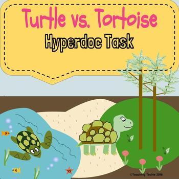 Turtle vs. Tortoise Hyperdoc