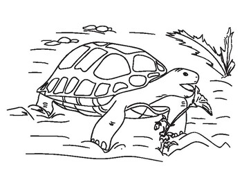 Letter S Coloring Pages For Adults Coloring Page For Adults ... | 270x350