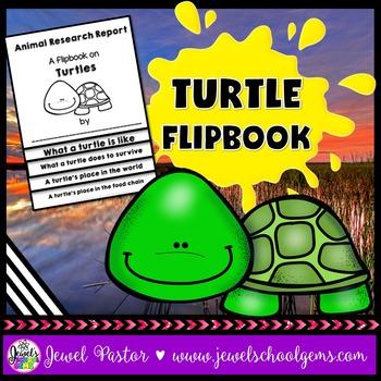 Turtle Science Activities (Turtle Research Flipbook)