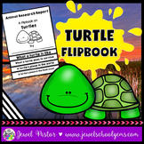 Turtle Science Activities (Turtle Research Flipbook)