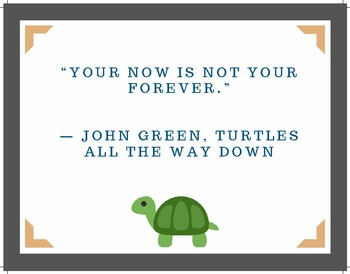 Turtles All the Way Down (Posters)
