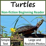 Turtles: Non-fiction animal e-book for beginning readers