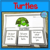Turtles Writing Flap Books and Fast Facts Graphic Organizers!