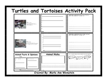 Turtles and Tortoises Activity Pack