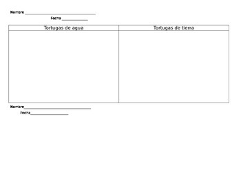 Turtles and Tortoises- Compare and Contrast- Spanish