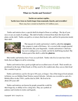 Turtles and Tortoises Thematic Unit