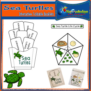 Turtles of the Sea Booklet