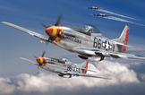 Tuskegee Airmen 109 Aerial Victories