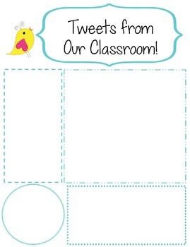 Tweet! Editable Boho Bird Classroom Newsletter Template