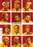 Twelve Angry Men Movie Graphic Organizer