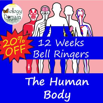 Twelve Weeks of Human Body Bell Ringers Warm Ups Bundle