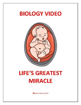 BIOLOGY WORKSHEET ON HUMAN REPRODUCTION VIDEO