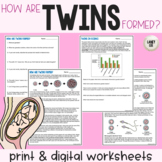Twins - Guided Reading + Worksheets - PDF & Digital Versions