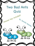 Two Bad Ants Quiz