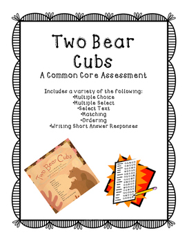 Two Bear Cubs Assessment