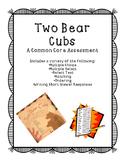 Two Bear Cubs Assessment