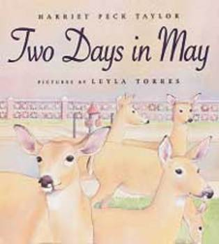 Two Days in May Vocabulary Houghton Mifflin Series