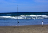 Two Fishing Poles in the Sand Stock Photo #241