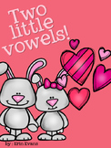 Two Little Vowels - a CVVC and CVCe game