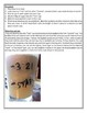 Two STEM Experiments - Yeast