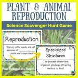 Up & Around Science Scavenger Hunts: Genetics {MS-LS1-4 & MS-LS3-2}