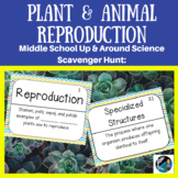 Up & Around Science Scavenger Hunts: Plant & Animal Reproduction {LS1-4 & LS3-2}