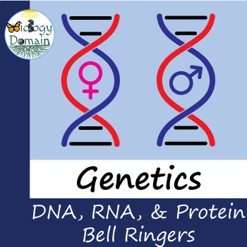 Two weeks of Genetics: DNA, RNA, and Proteins Bell Ringers Warm Ups with Answers