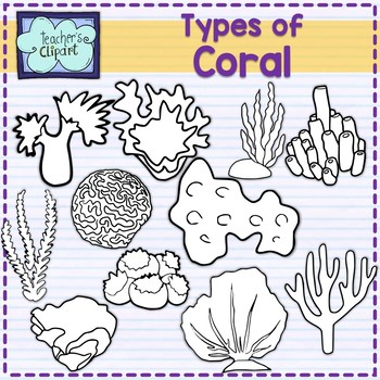 Type of Coral Clip art Summer aquatic life