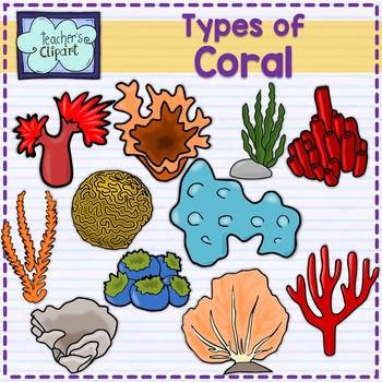Types of coral clip art summer aquatic life by teachers clipart types of coral clip art summer aquatic life publicscrutiny Images