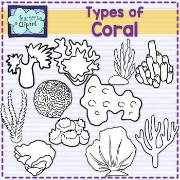 Types of Coral Clip art Summer aquatic life