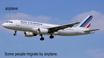 Types and Reasons of Migration ESL ENL Bilingual