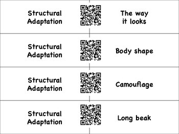 Types of Adaptations Matching with QR Codes