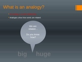 Types of Analogies ppt, activity, and assessment