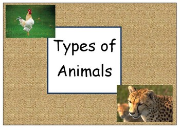 Types of Animals - Classifying - English - Sorting Animals by Type