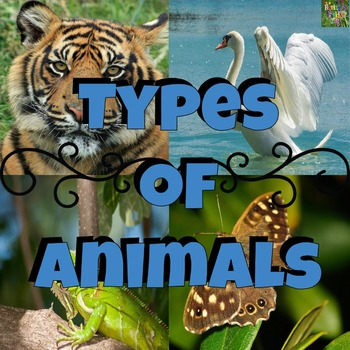 Types of Animals Mini Posters, Picture Task Cards, and Worksheets