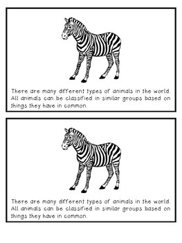 Types of Animals, animal families & groups mini-booklet