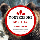 Montessori 3 Part Cards - Types of Bear