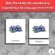 Types of Berries Montessori Vocabulary 3-part Cards