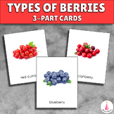 Types of Berries Montessori Vocabulary 3-part Cards