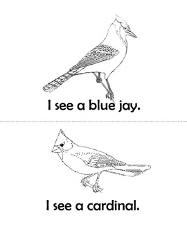 Types of Birds Easy Reader