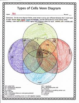 Cell Types Venn Diagram
