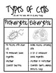 Types of Cells Visual and Graphic Organizer