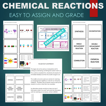 Types of Chemical Reactions (Combustion, Synthesis, etc) Sort & Match Activity