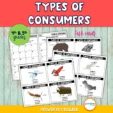 Types of Consumers Card Sort